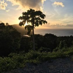 Guadeloupe Deshaies, villa Gajah Mada
