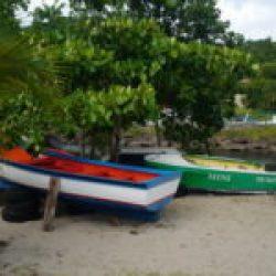 Guadeloupe Deshaies port de pèche