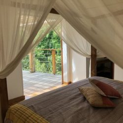 Guadeloupe Deshaies chambre forêt