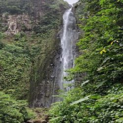 riviere foret cascades excursions